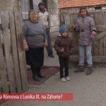 20140804_pristahovalci_lunik